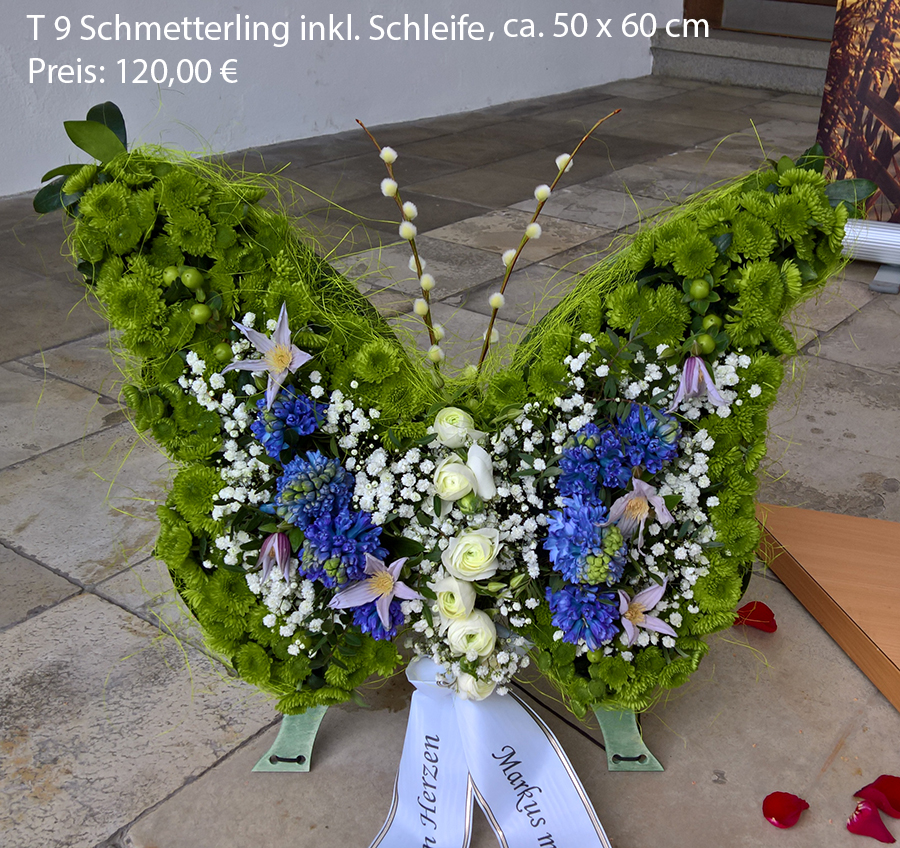 T9 Schmetterling